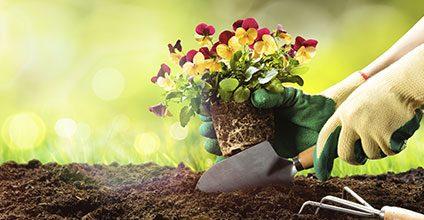 Formación gratuita en Abonos y fertilizantes