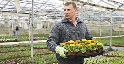 Formación gratuita en Ahorro y eficiencia energética en la agricultura