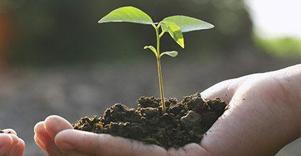 Formación gratuita en Condicionalidad y buenas prácticas agrarias