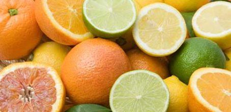 Curso de Defectos y alteraciones en frutos cítricos en Ibecon – Parla
