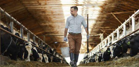 Curso de Higiene en la ganadería: buenas prácticas en Ibecon – Parla